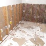 mold-removal-houston