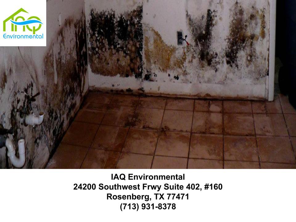 mold-inspection-houston